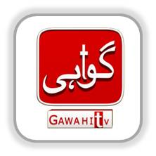 Live Streaming of Gawahi TV, Watch Gawahi TV Free Online